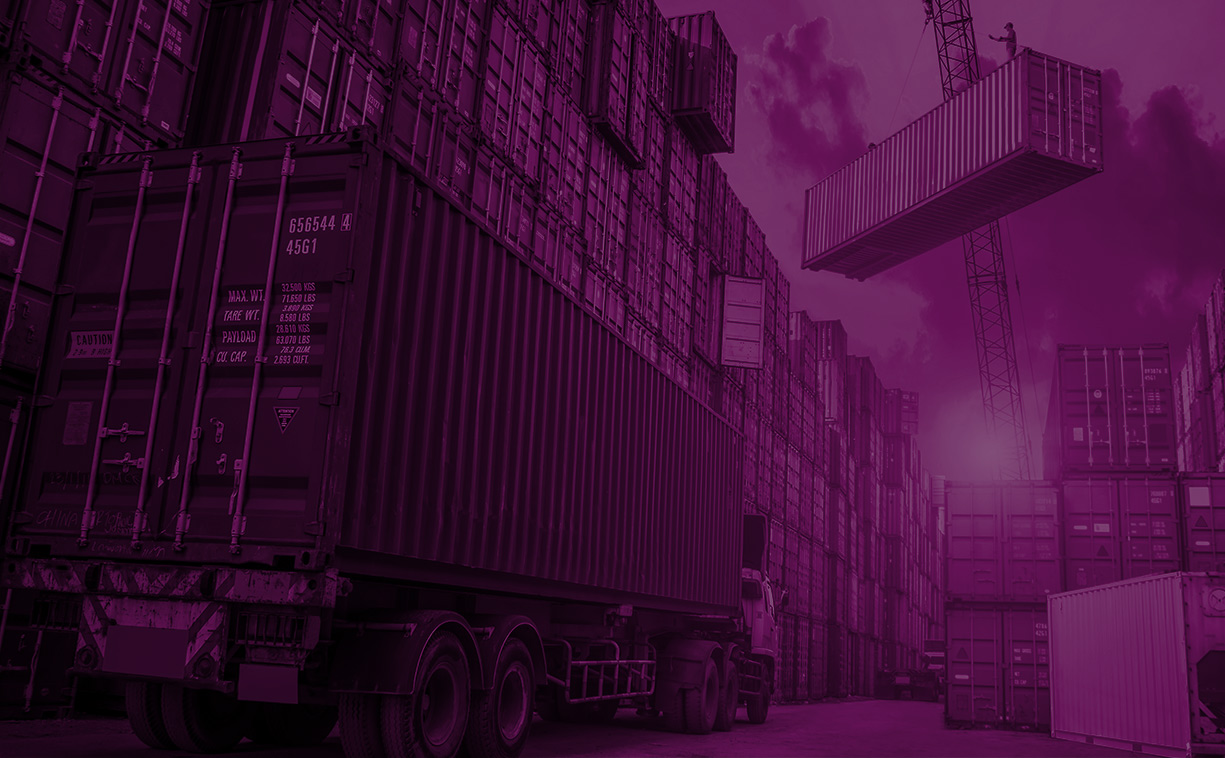 Trade & Logistics Final